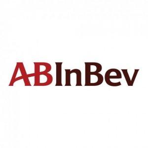 Anheuser-Busch InBev (AB InBev)